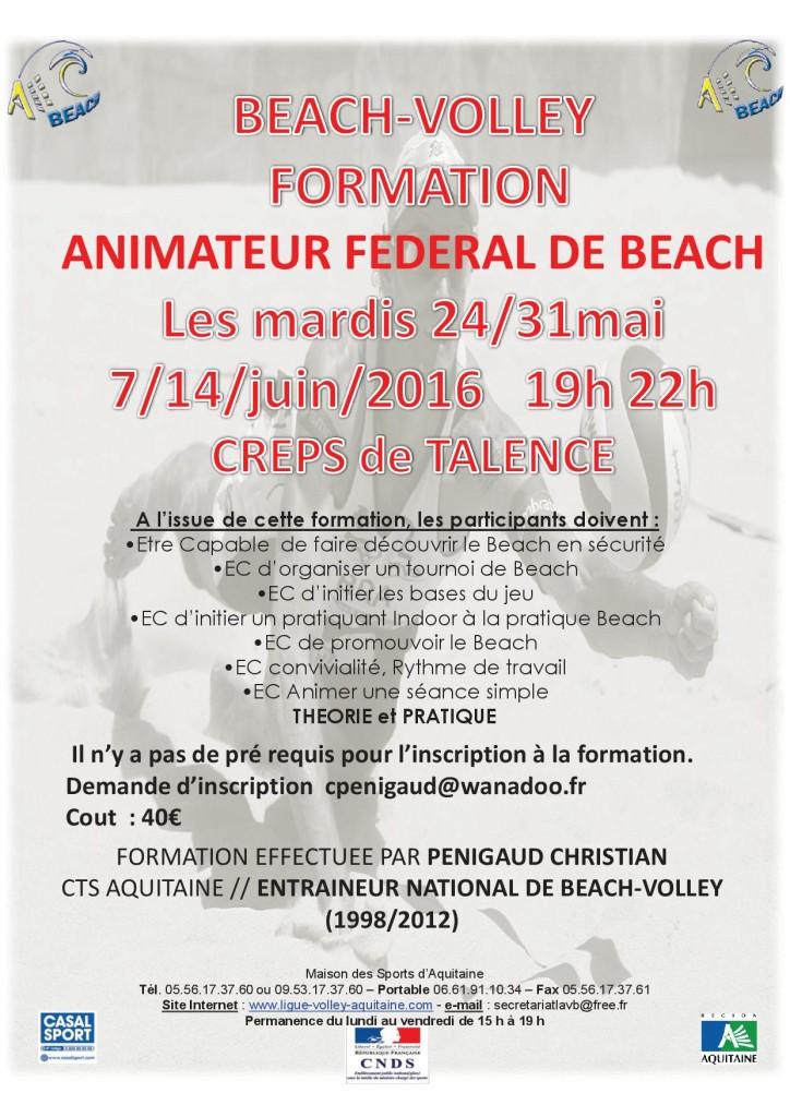 BEACH-VOLLEY formation Animateur talence mardi 2016
